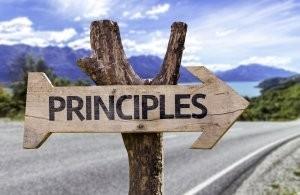 Principles 300